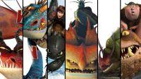 Train Dragons