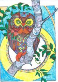 Magical Halloween Creature Coloring Owl