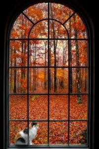 Zen Pictures Autumn