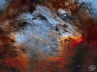 """The Pelican Nebula in Gas, Dust, and Stars"""