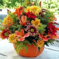 Mixed Bouquet in a Pumpkin