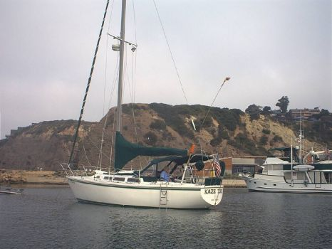 Anchored up in Dana Point Harbor