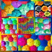 RAINBOWS FOR JIGIDI LAND