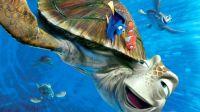 Finding Nemo #1