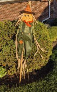Mr. Un-scareycrow, part II