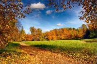 the_colors_of_fall_____92__by_my_shots-d5osikg