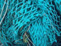 Maasholm - at the fisher port