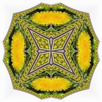 Pampeliška / Dandelion - deštníček víly Amálky / Amálka Fairy Small Umbrella