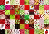 joaninhas/ ladybugs