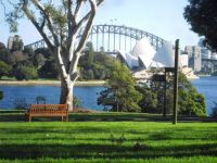 Sydney Harbor, Bridge, Opera House, from royal Botanic Gardens