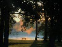 Lake Mist at Sunrise, August 5, 2021