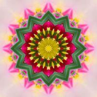 kaleidoscope 338 a star small
