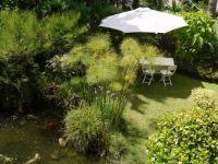 Gibraltar Botanic Gardens, the Alameda