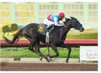 Medina Spirit Wins Kentucky Derby Wire-To-Wire!