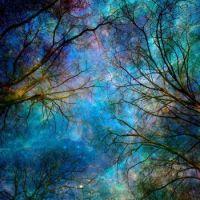 Poetic landscape