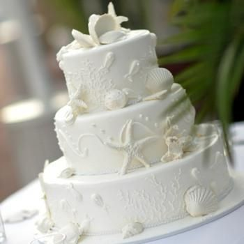pretty food- seashell cake