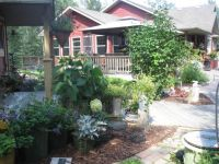 Our house and garden