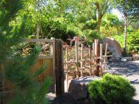 Albuquerque Botanical Gardens-b