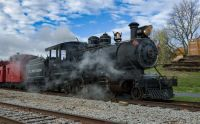 Little River Railroad 110 operating one of their fall specials