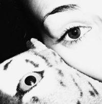 Eye for the eye