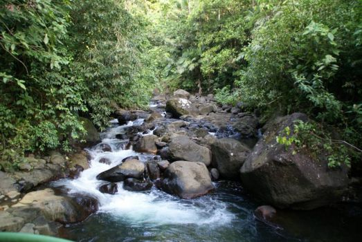 Peaceful Stream, Costa Rica