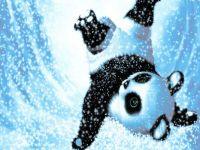 Cute Snow Panda