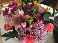 Aldi's flowers May2021