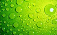 moisture on green