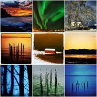 4 seasons in one image