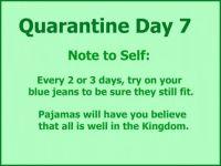 Quarantine Day 7