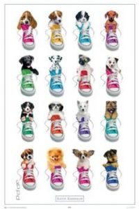 Puppys in Shoes