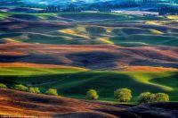 Colorful Palouse Hills
