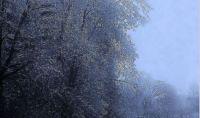 Ice storm outside my window