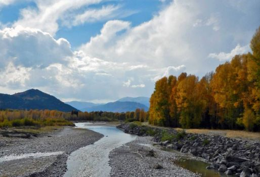 My heart pines for WY: Along the Gros Ventre River, north of Jackson