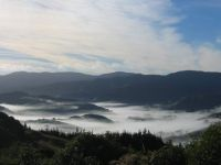 Early morning mist over Whitemans Valley, Hutt Valley, NZ