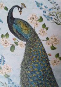 Peacock                   Artist Sue Schlabach     Wild Apple Licensing