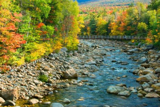 Lincoln Woods Bridge NH