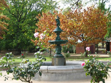 Fountain in Castlemaine Gardens 1878