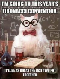 fibonacci convention
