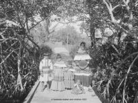 A Seminole mother & children - Jupiter, Florida - 1903