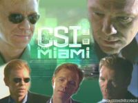 CSI MIAMI Horatio