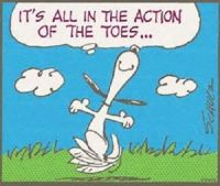 Action of the Toes...