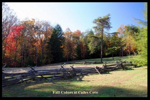 Fall Colors At Cade's Cove
