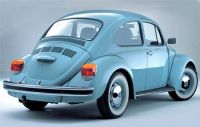 The Last Mexican Beetle