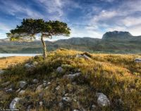 article-2522775-1A0D28Loch Maree, Wester Ross, Scotland