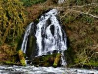 Waterfall on Nestucca River