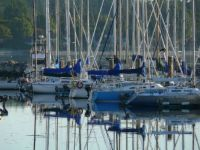 Oak Bay Marina - smaller