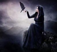 black_bird