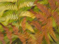 Fuzzy Ferns