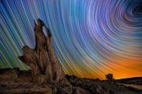 Star Trails 41